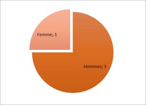 Répartition hommes / femmes proposé par les socialistes